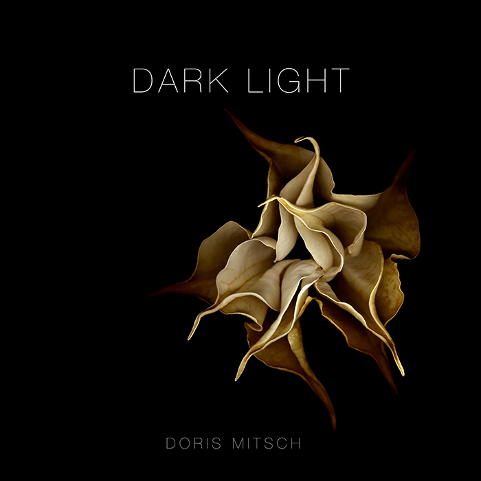 Book cover: Dark Light by Doris Mitsch